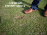 Repairing fairway divots